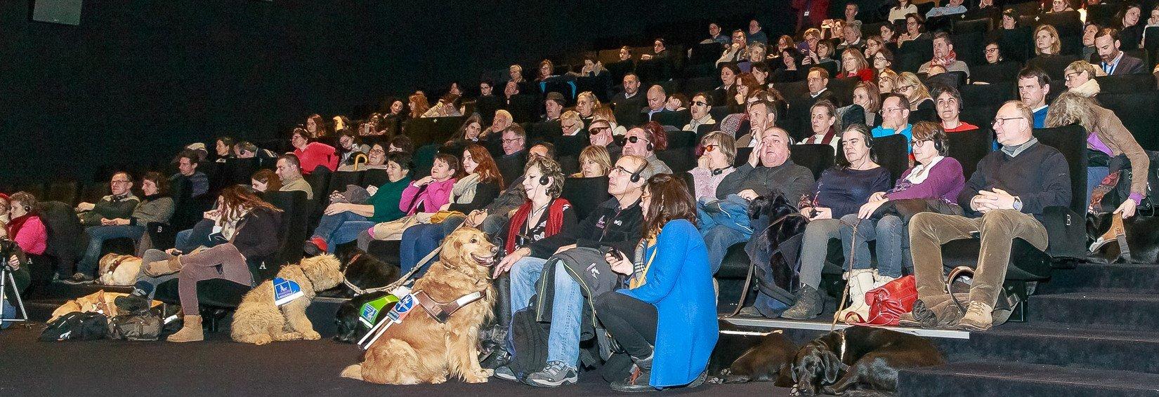 Une séance inédite organisée par Wamiz et Royal Canin !