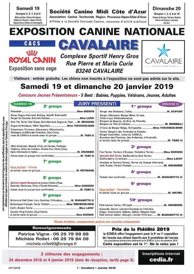 Deuxième édition de l'exposition Canine de Cavalaire