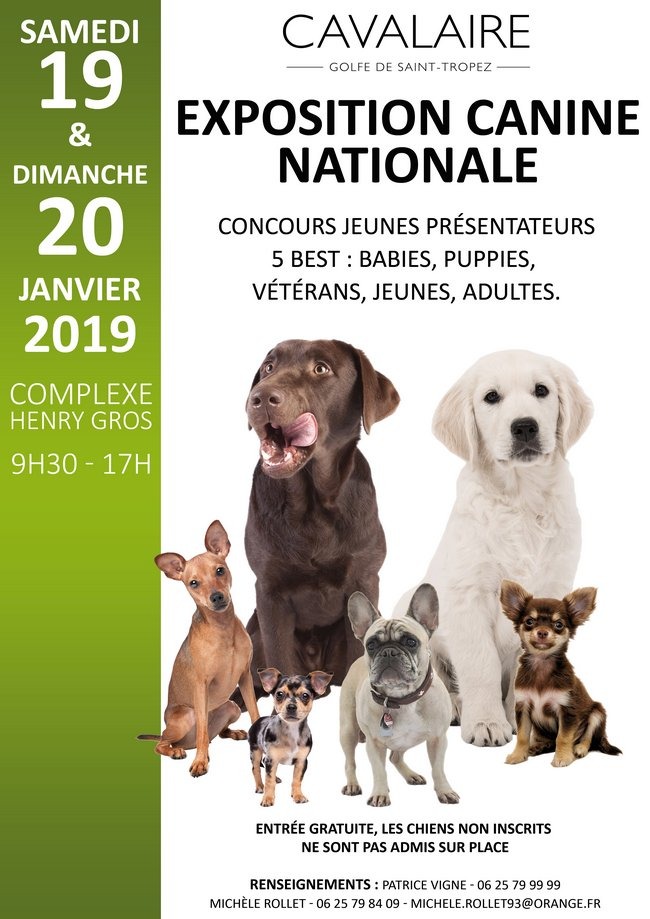 Exposition Canine Nationale 2019