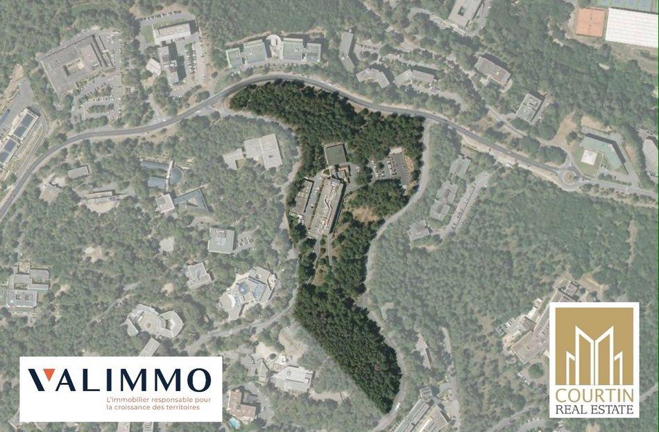 Courtin Real Estate et Immobilier Sophia-Antipolis