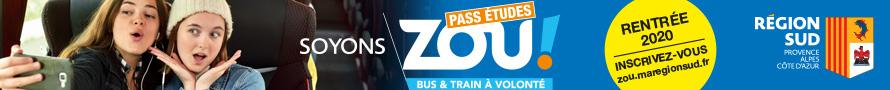Zoo Pass Etudes